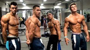 prise de masse seche steroide